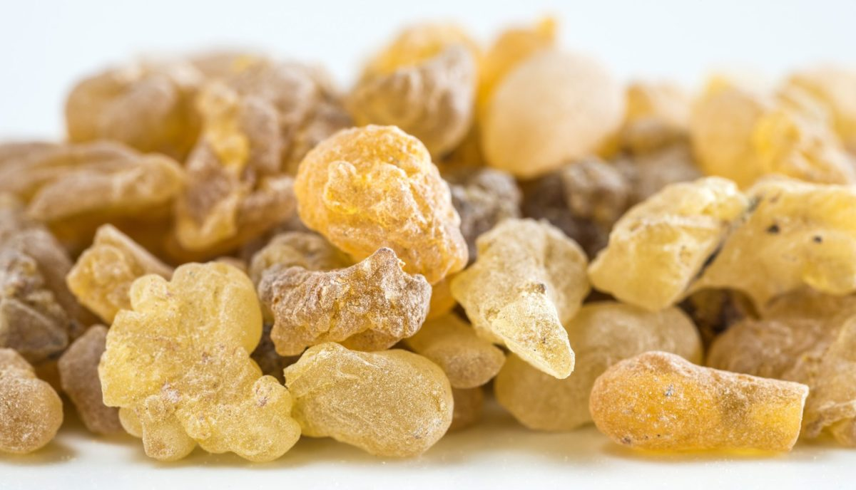 Boswellia (Indian Frankincense) for Migraines